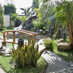 Top Tips For Creating a Garden Fish Pond