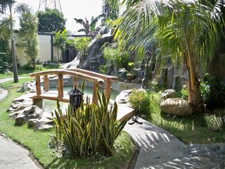 Top tips for creating a garden fish pond garden ponds guide for Garden pond tips