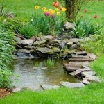 How to Maintain a Healthy Garden Pond and the Equipment That You Will Need