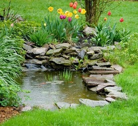 How To Maintain A Healthy Garden Pond And The Equipment